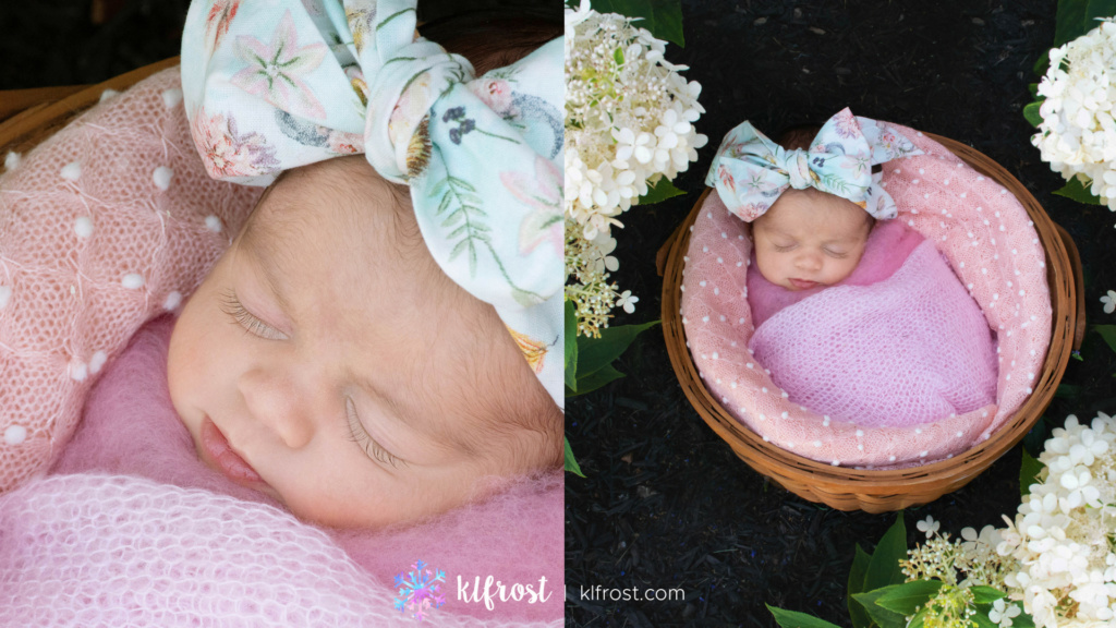 baby girl wrapped in bastket with large bow on ground with white hydrangeas outside