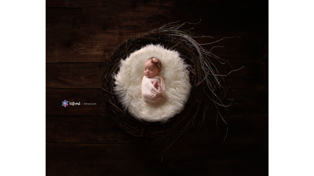 baby girl wrapped in peach fabric laing on nest of twigs and hardwood floor