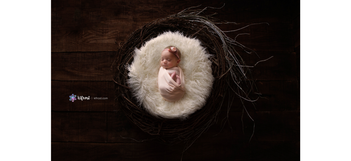 Gentzel | Studio Newborn | Columbus Ohio Newborn Photographer