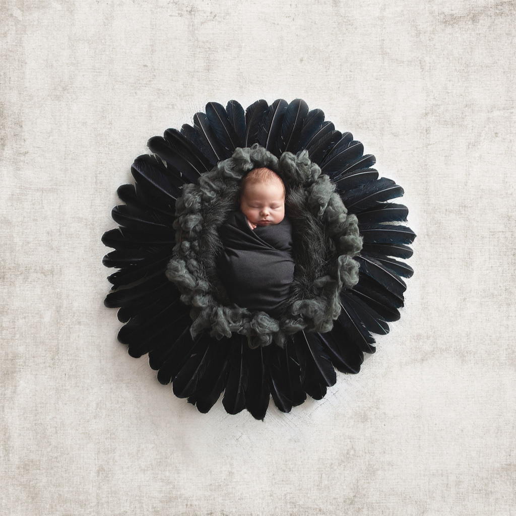 custom portrait of baby boy in grey wool in circle of raven black feathers
